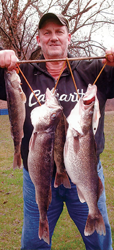 crawford-walleye001